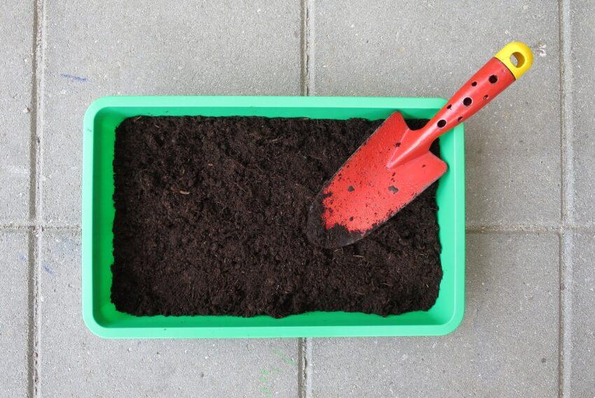 10 consigli per iniziare un orto  – parte 2