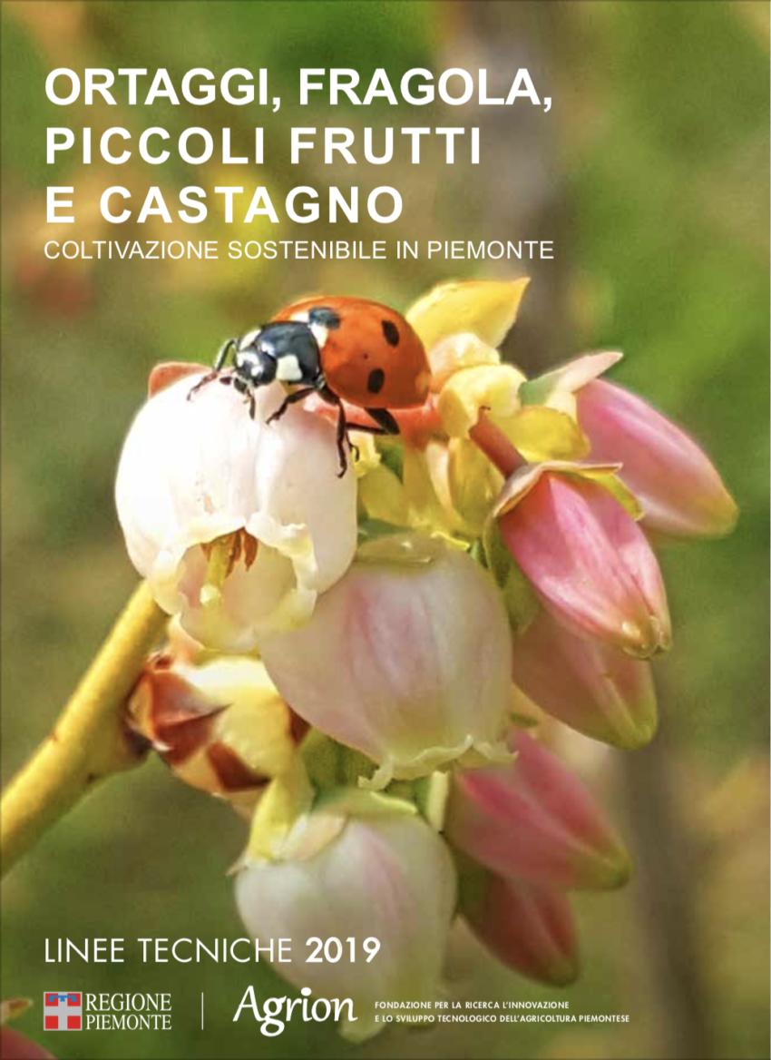 Ortaggi, Fragola, Piccoli Frutti e Castagno – coltivazione sostenibile – linee tecniche 2019