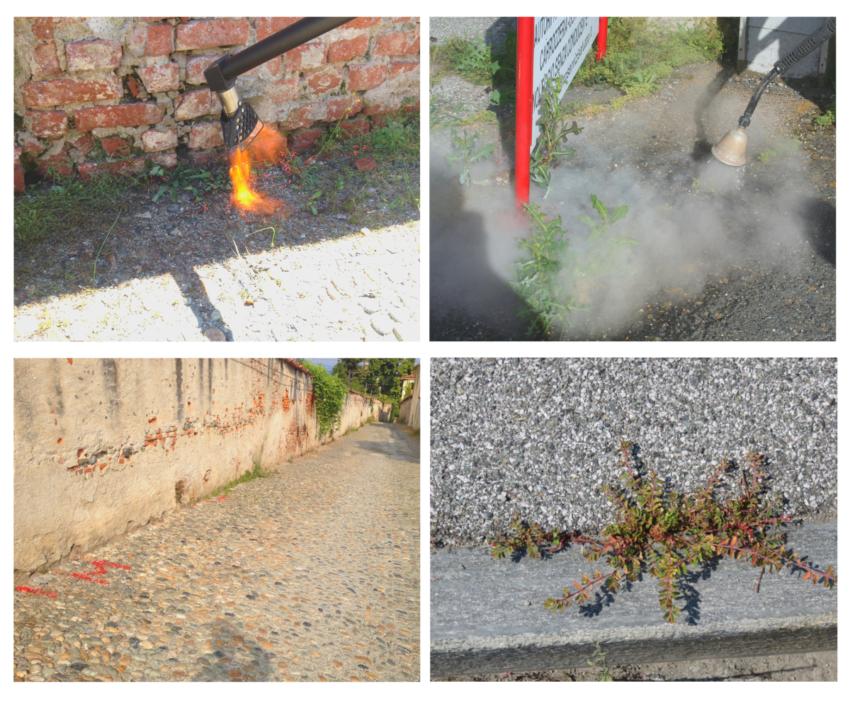 Gestione ecosostenibile delle erbe infestanti in ambito urbano: al via le prime applicazioni