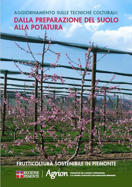 Aggiornamento sulle tecniche colturali: dalla preparazione del suolo alla potatura