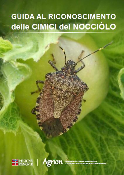 Guida al riconoscimento delle cimici del nocciòlo