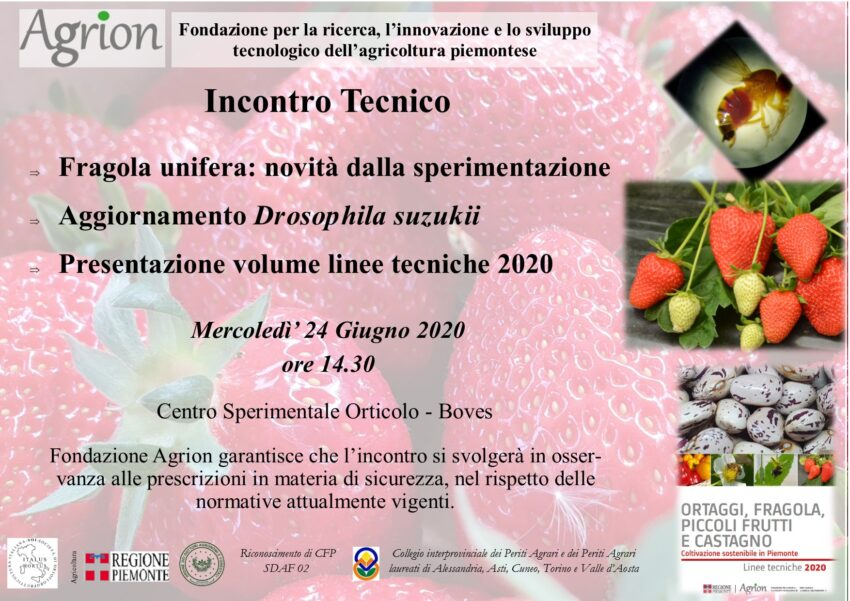 24/06/2020 – Incontro Tecnico Fragola unifera (Boves CN, ore 14.30)