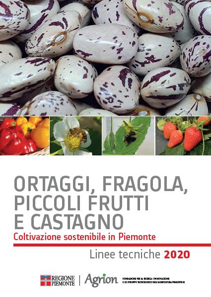 Ortaggi, fragola, piccoli frutti e castagno. Coltivazione sostenibile in Piemonte – Linee tecniche 2020