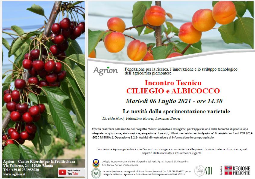6/07/2021 – Incontro Tecnico Ciliegio e Albicocco (Manta CN, ore 14.30)