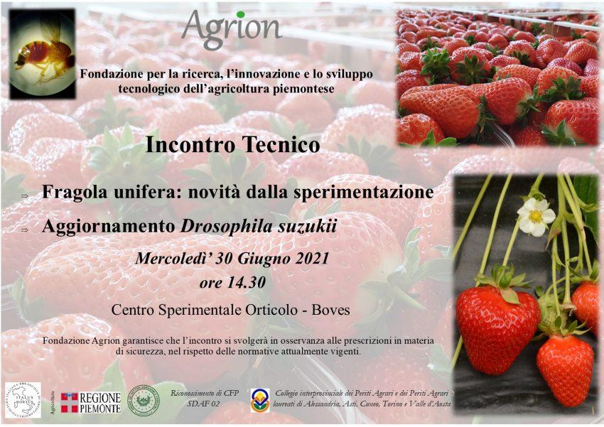 30/06/2021 – Incontro Tecnico Fragola Unifera 2021 (Boves CN, ore 14.30)
