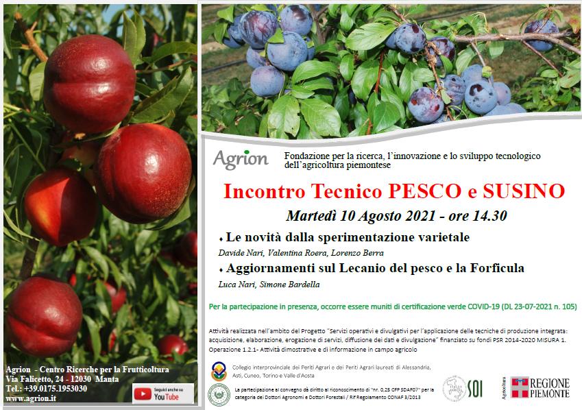 10/08/2021 – Incontro Tecnico Pesco e Susino (Manta CN, ore 14.30)